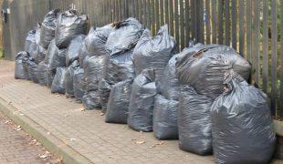 Więcej o: Opóźniena w odbiorze odpadów biodegradowalnych