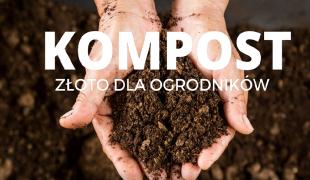 Więcej o: Kompost – złoto dla ogrodników